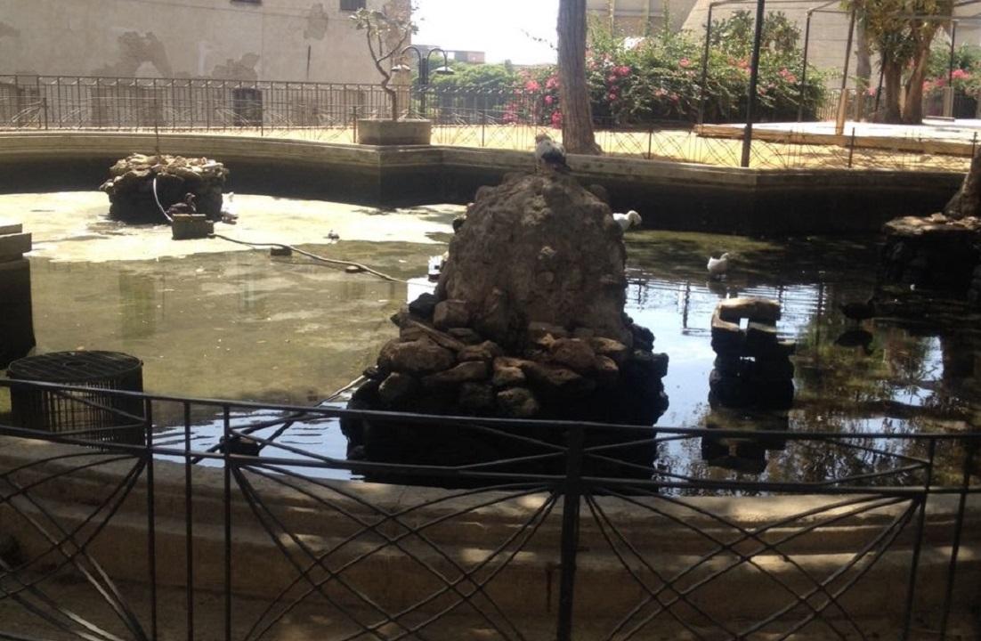 Ripulita la vasca della villa comunale corriere di sciacca for Vasca per anatre
