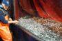 Covid, donna saccense muore per complicazioni patologiche