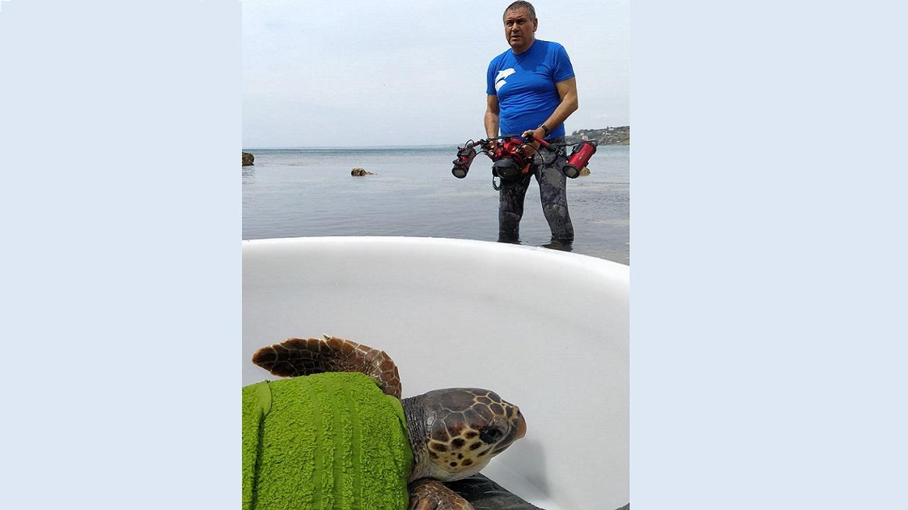 Le emozioni delle tartarughe liberate negli scatti di Tirnetta <font color=