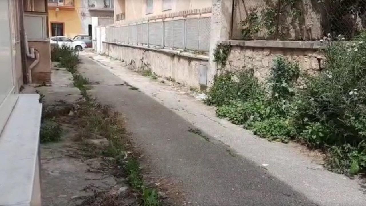 Segnalazioni: erba alta e sterpaglie nel Rione IV Novembre