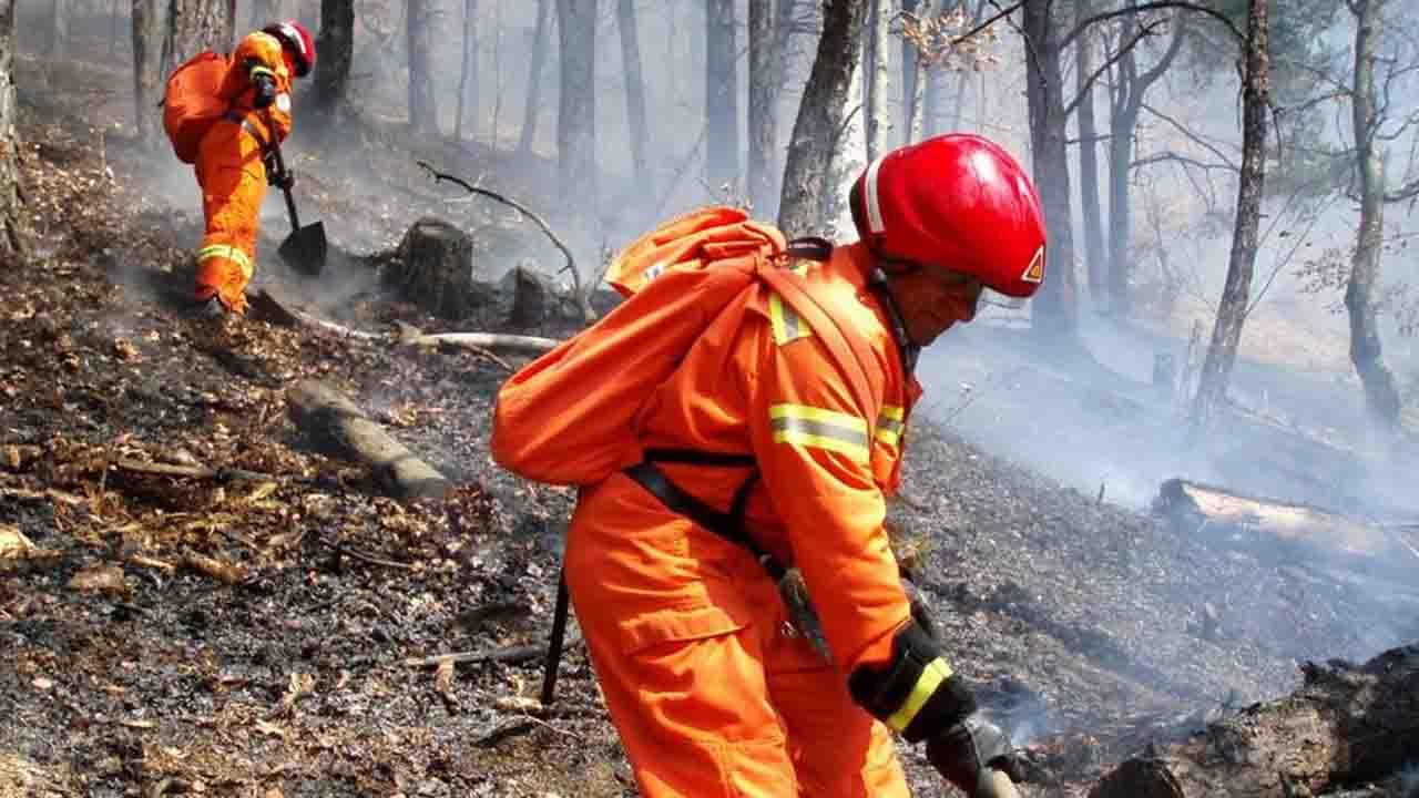 Emergenza incendi in Sicilia, arrivano 33 squadre dal Nord Italia