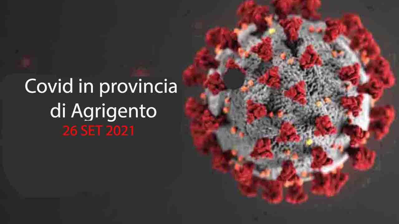 Covid, in provincia gli attuali contagiati sotto quota 400 (396). La curva continua la discesa