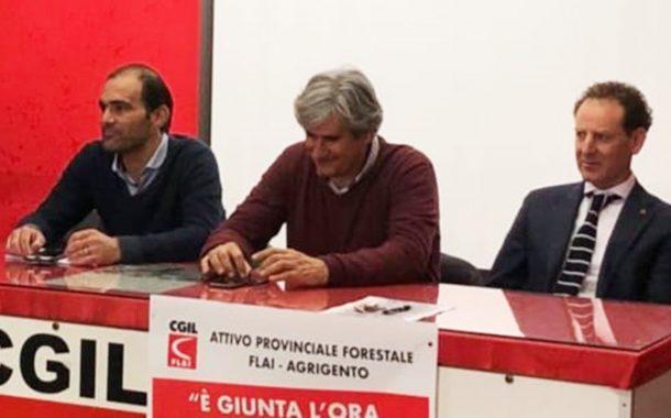 Danneggiamento uliveto, la solidarietà della Cgil e di Simone Di Paola a Franco Colletti